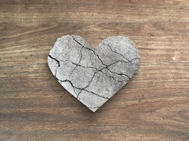 カサンドラ症候群の思い~私たちの愛はどこへ~ / 水月ひなた